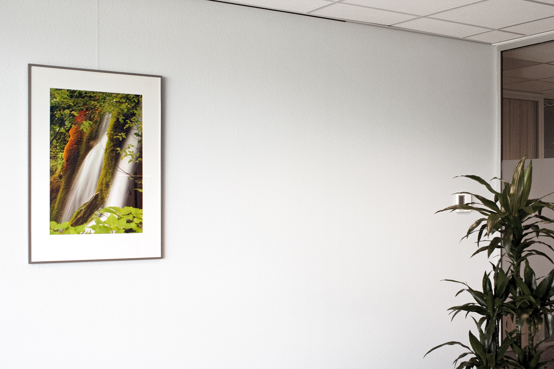 Commission for an accountancy office, Oud-Beijerland